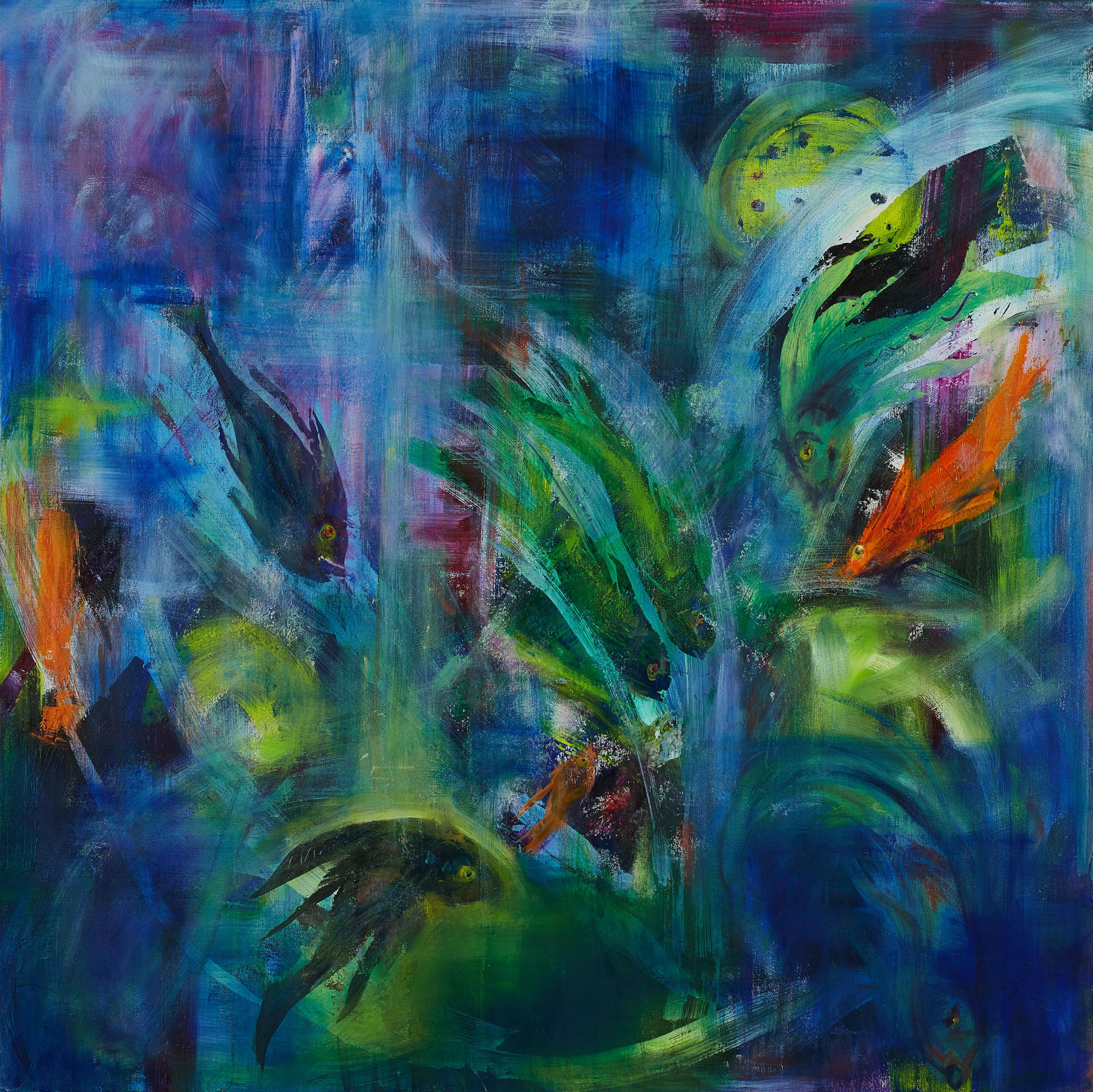 Curious Fish 2017 framed 100cm x 100cm